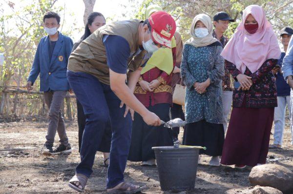 100.000 Pullet, Langkah Awal Bangun Industri Peternakan di NTB