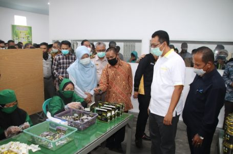 IST/RADAR MANDALIKA CEK HASIL: Gubernur NTB, Zulkieflimansyah saat meninjau salah satu jenis industrialisasi yang menjadi program unggulan Pemprov NTB di Mataram.